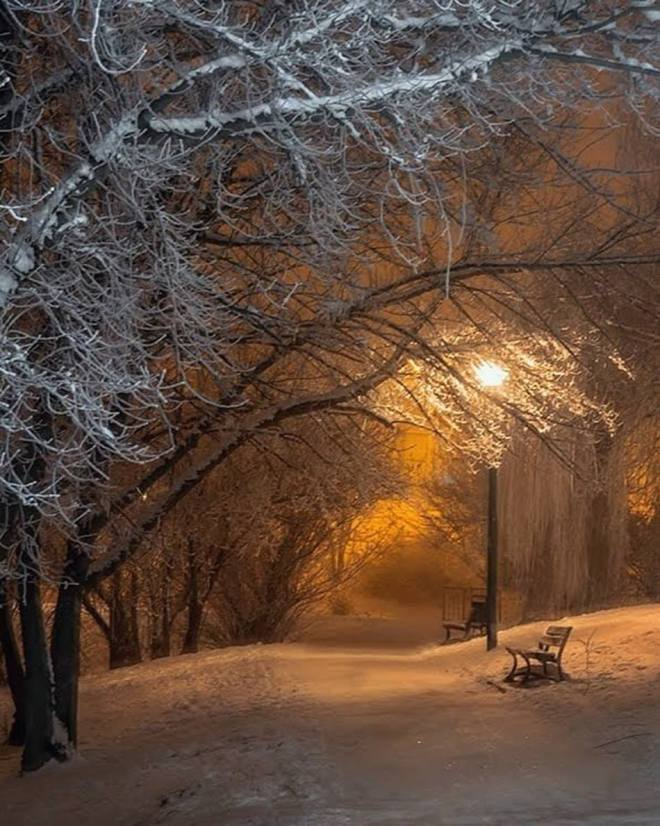 in the stillness of the night ....by barbara klonowo