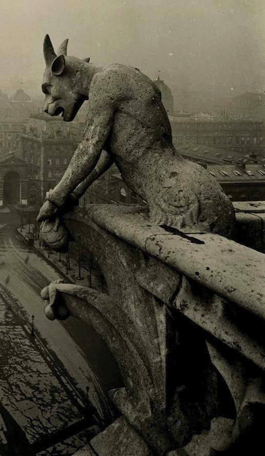 The Gargoyle of Notre Dame overlooking Paris, 1910.